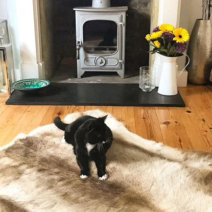 black and white cat lying on fur rug in front of fireplace