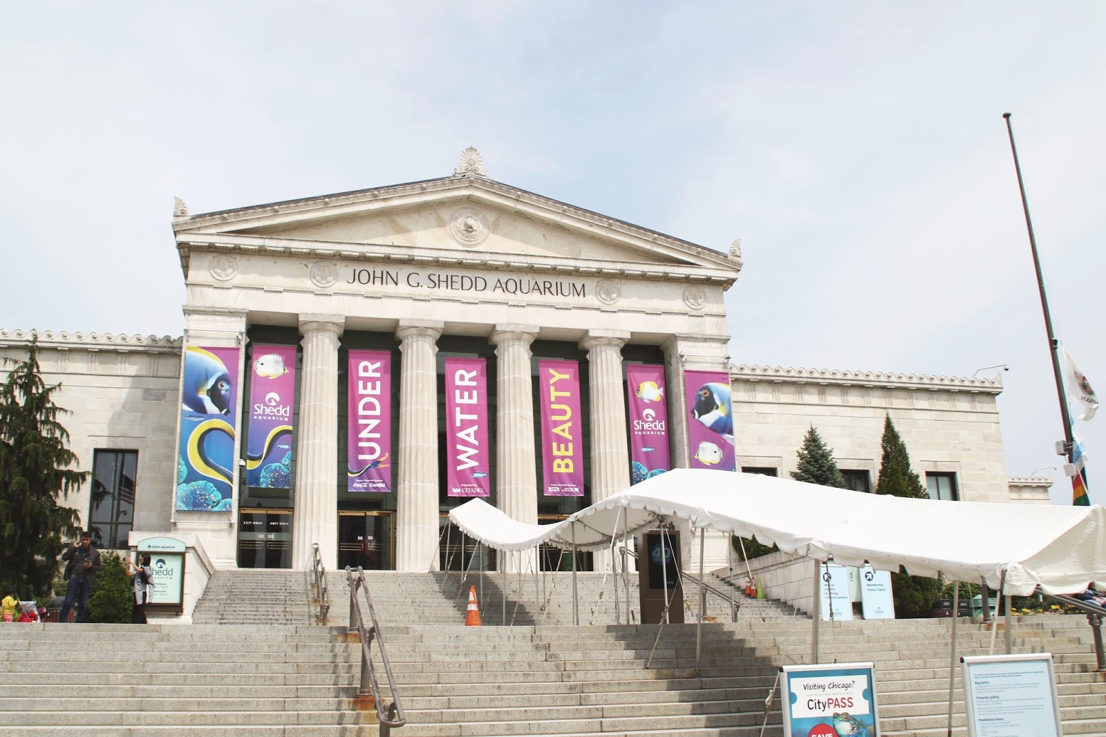 Exterior of Shedd Aquarium in the Summer