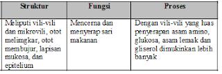 No 3 Jawaban a Asesment Biologi SMA Latihan (UN) Program IPA (Bagian 2)