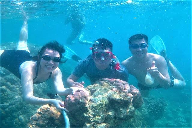 Paket Snorkeling Pulau Harapan