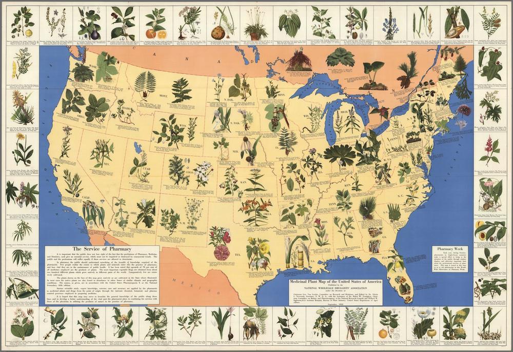 "Mapa de plantas medicinais dos Estados Unidos da América."" Edwin Newcomb e National Wholesale Druggists 'Association, 1932"