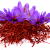 Saffron | For Better Brain Health