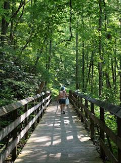 DSC 0864 - Traveling West Virginia - Hawks Nest - New River Gorge Trail