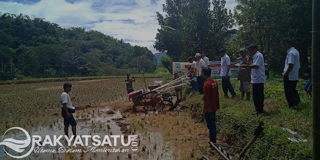 Ratusan Warga Malimbong Balepe Sambut Launching Pola Tanam Semusim