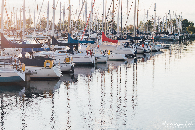 Family weekend in Cape Helius, Hellevoetssluis