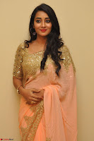 Bhanu Shri looks stunning in Beig Saree choli at Kalamandir Foundation 7th anniversary Celebrations ~  Actress Galleries 007.JPG