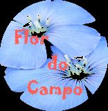 BLOG FLOR DO CAMPO