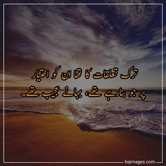 urdu shayari dp image