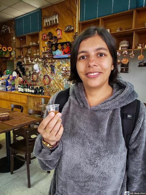Provando a Chicha nas Vinícolas chilenas: Valle Casablanca e Concha Y Toro.