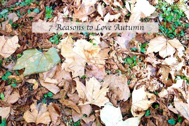 reasons to love autumn