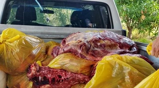 Os três cavalos teriam sido roubados em uma propriedade rural, abatidos de forma clandestina e sua carne seria vendida no comercio de Jequié.