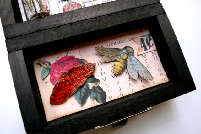 Canvas Insects in DIY Specimen Tray by Dana Tatar