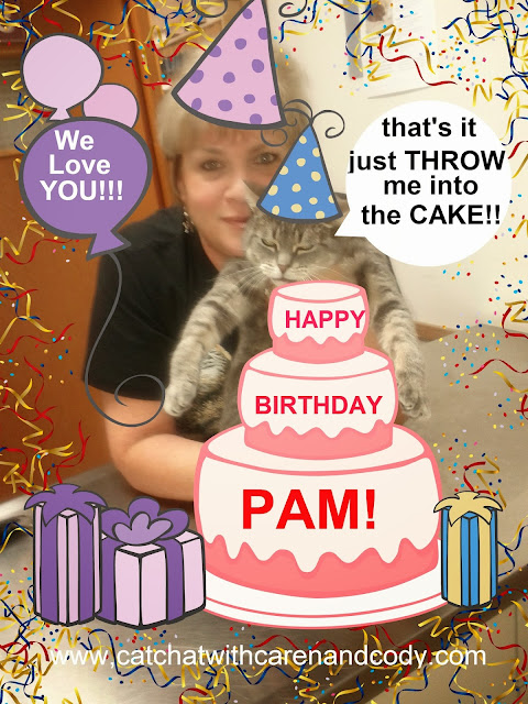 happy+birthday+pam cat chat with caren and cody oh soooo wordless wednesday!