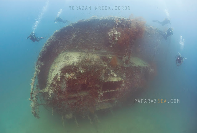 Scuba Diving, Underwater Photography, Coron Diving, Coron Underwater Photography