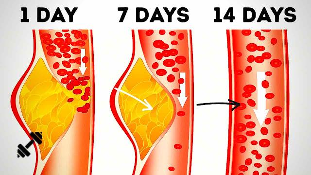 10 Popular Weight Loss Diets