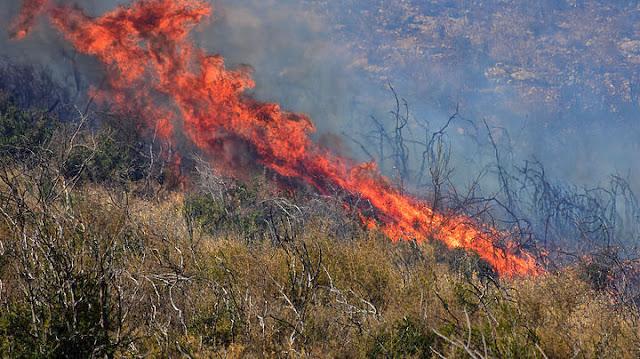 Αργολίδα: Μικρής έκτασης φωτιά στην περιοχή της Αγίας Άννας