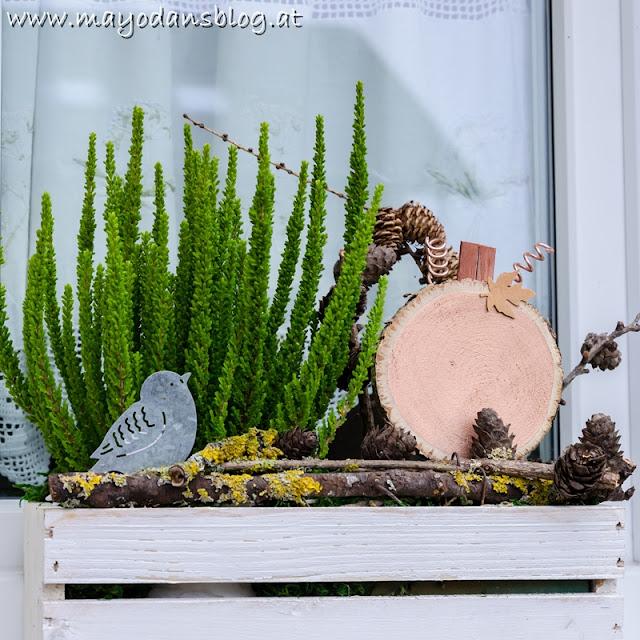 Fensterkästen im Herbst