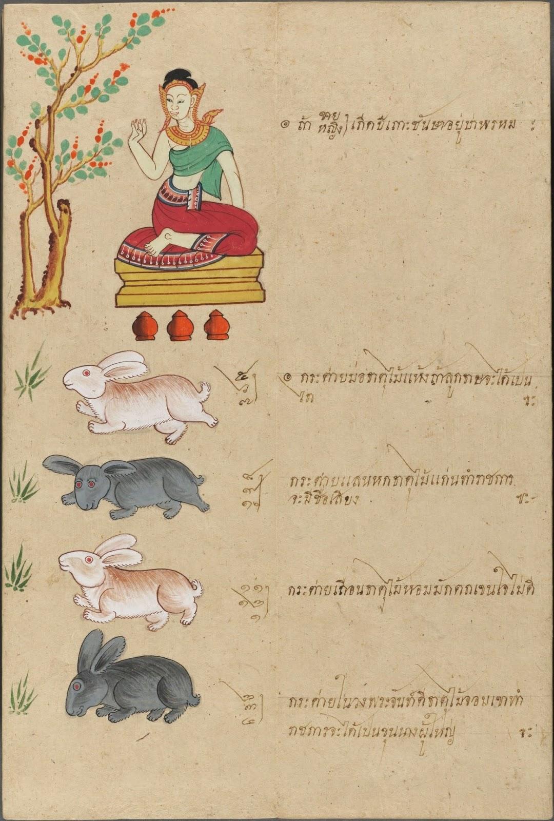 Bibliodyssey Thai Fortune Telling Manuscript