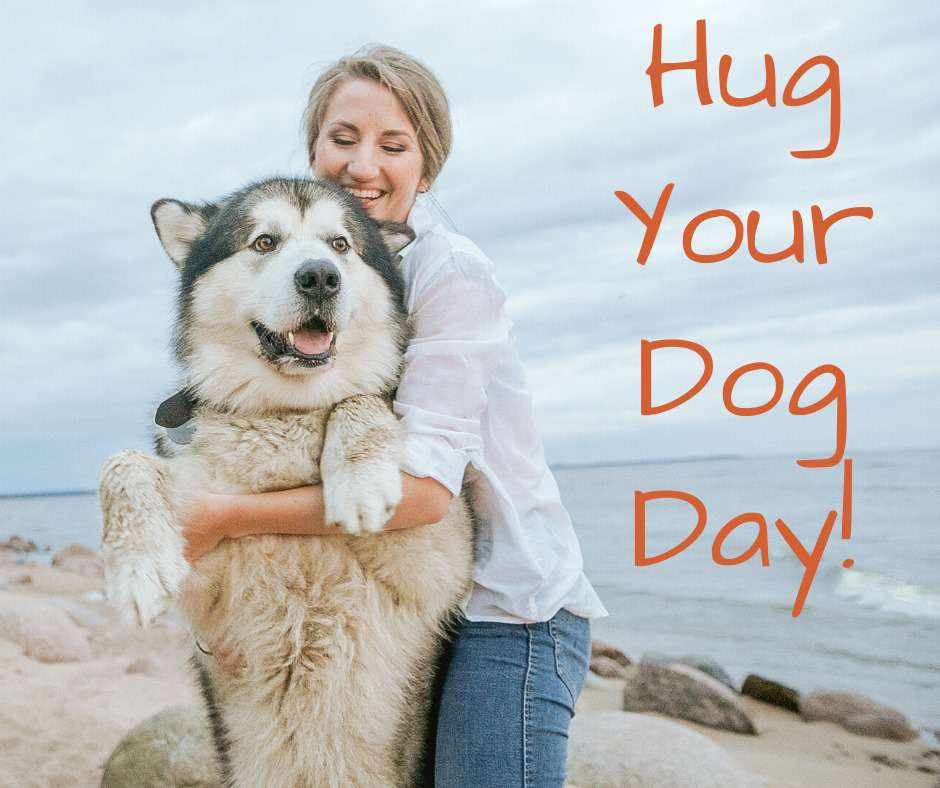 National Hug Your Dog Day Wishes For Facebook