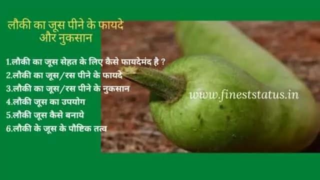 लौकी का जूस पीने के फायदे और नुकसान क्या है | Bottle Gourd Juice In Hindi