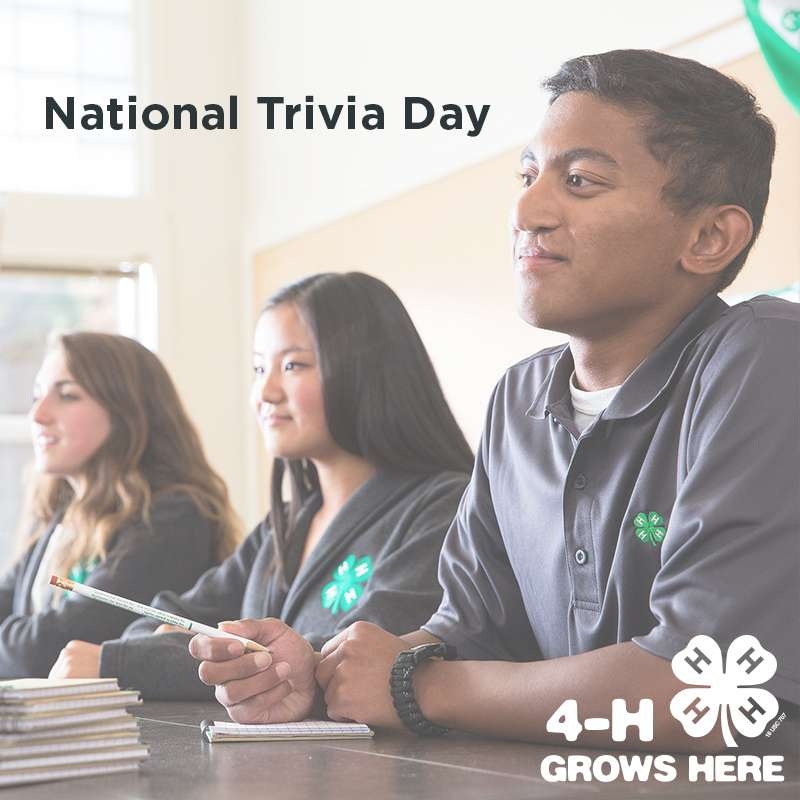 National Trivia Day Wishes for Instagram