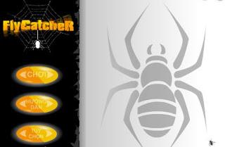 Chơi game nhện bắt ruồi hấp dẫn