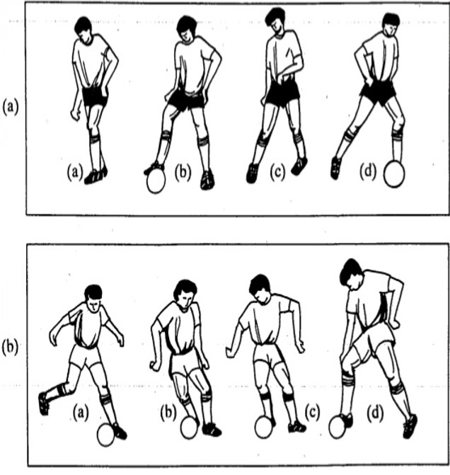 Info Lab Latihan Kemahiran Asas Untuk Bola Sepak