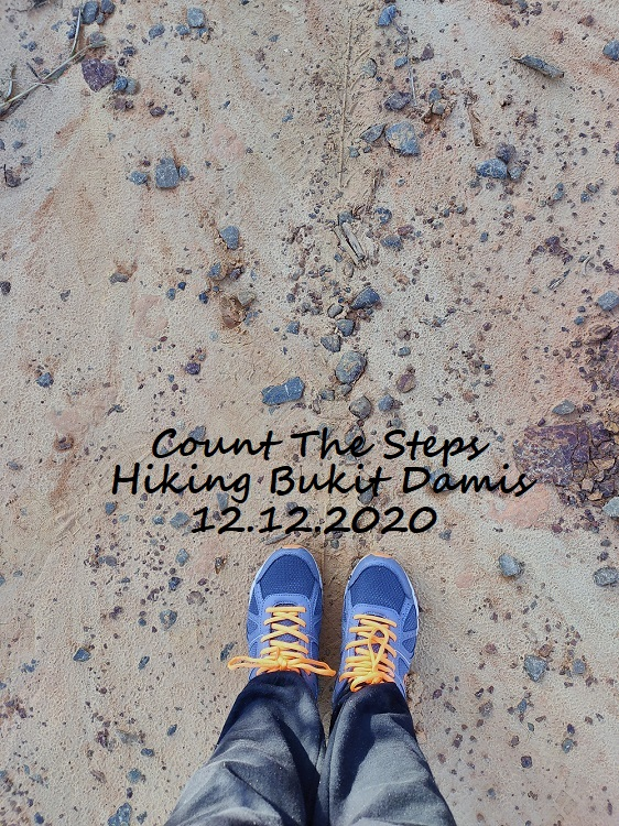 Count The Steps Hiking Bukit Damis || 12.12.2020