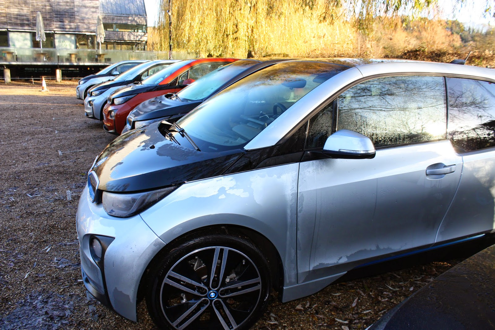 A line of parked BMW i3 electric cars
