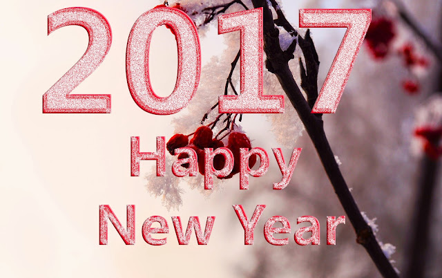 Happy New Year HD Pics 2017
