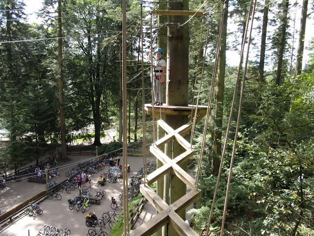 tree climbing centre parcs longleat