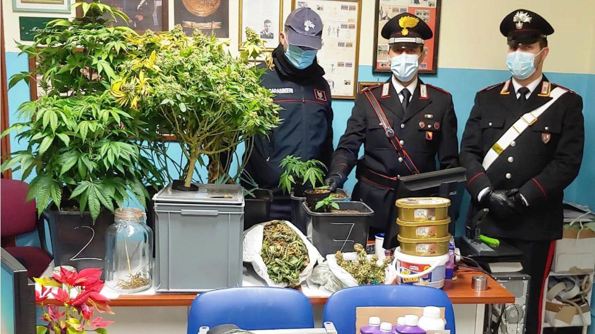 sequestro marijuana Carabinieri Mascalucia