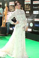 Poonam Kaur in Beautiful Floor Length Gown at IIFA Utsavam Awards 2017  Day 2  Exclusive 26.JPG