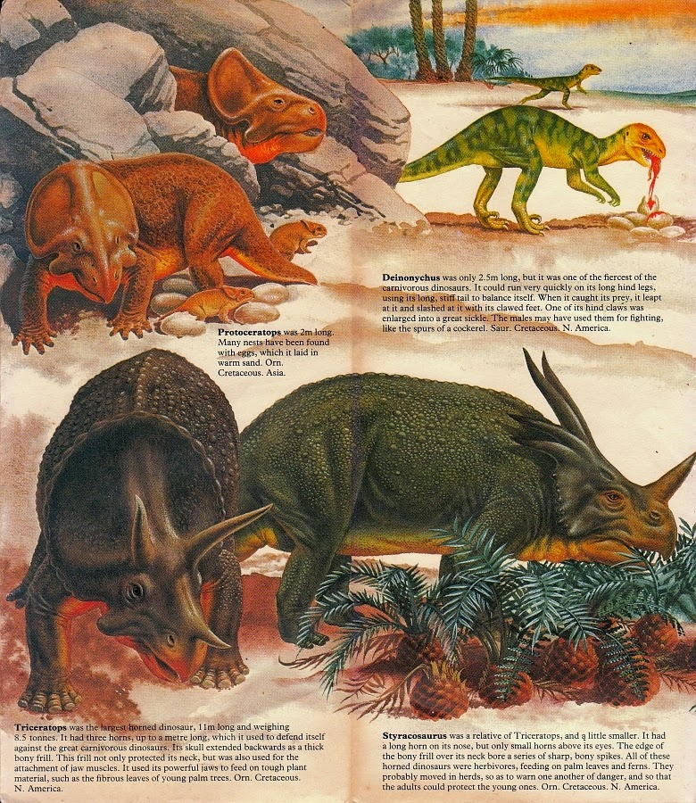 an introduction to the chasmosaurus from the age of dinosaurus The first 60 pages of the book provide an introduction to dinosaur biology,  of  some of the rock stars of the age of dinosaurs, from t-rex to triceratops, will.