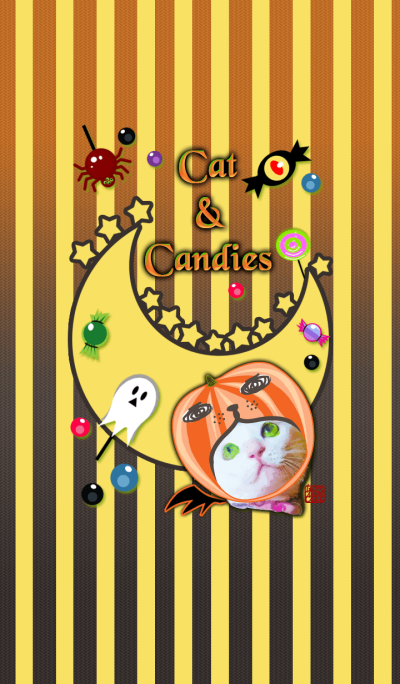 Clearly Cat & Candies