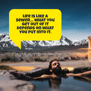 Funny Inspirational Work Quotes -1234bizz: (Life is like a sewer… what you get out of it depends on what you put into it - Tom Lehrer)