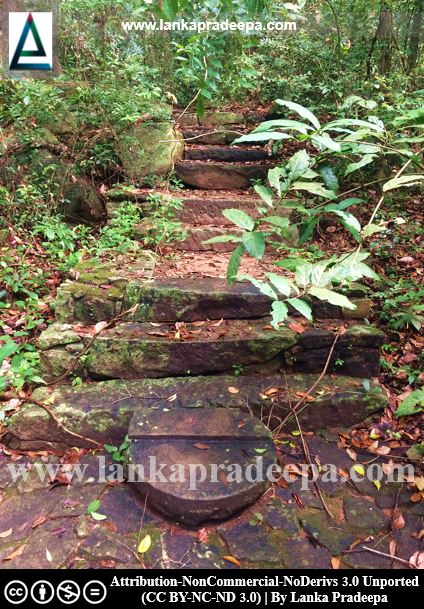 Steps leading to the forest, Arankele