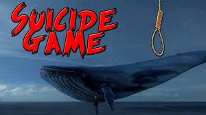 تحميل لعبة الحوت الازرق لعبة الموت للكمبيوتر والاندرويد برابط مباشر Download blue whale game
