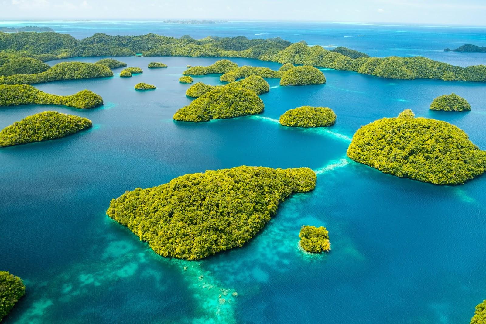 花你10分鐘搞懂全攻略【帛琉旅遊】一年四季都好玩 | 跟著東南旅遊環遊世界