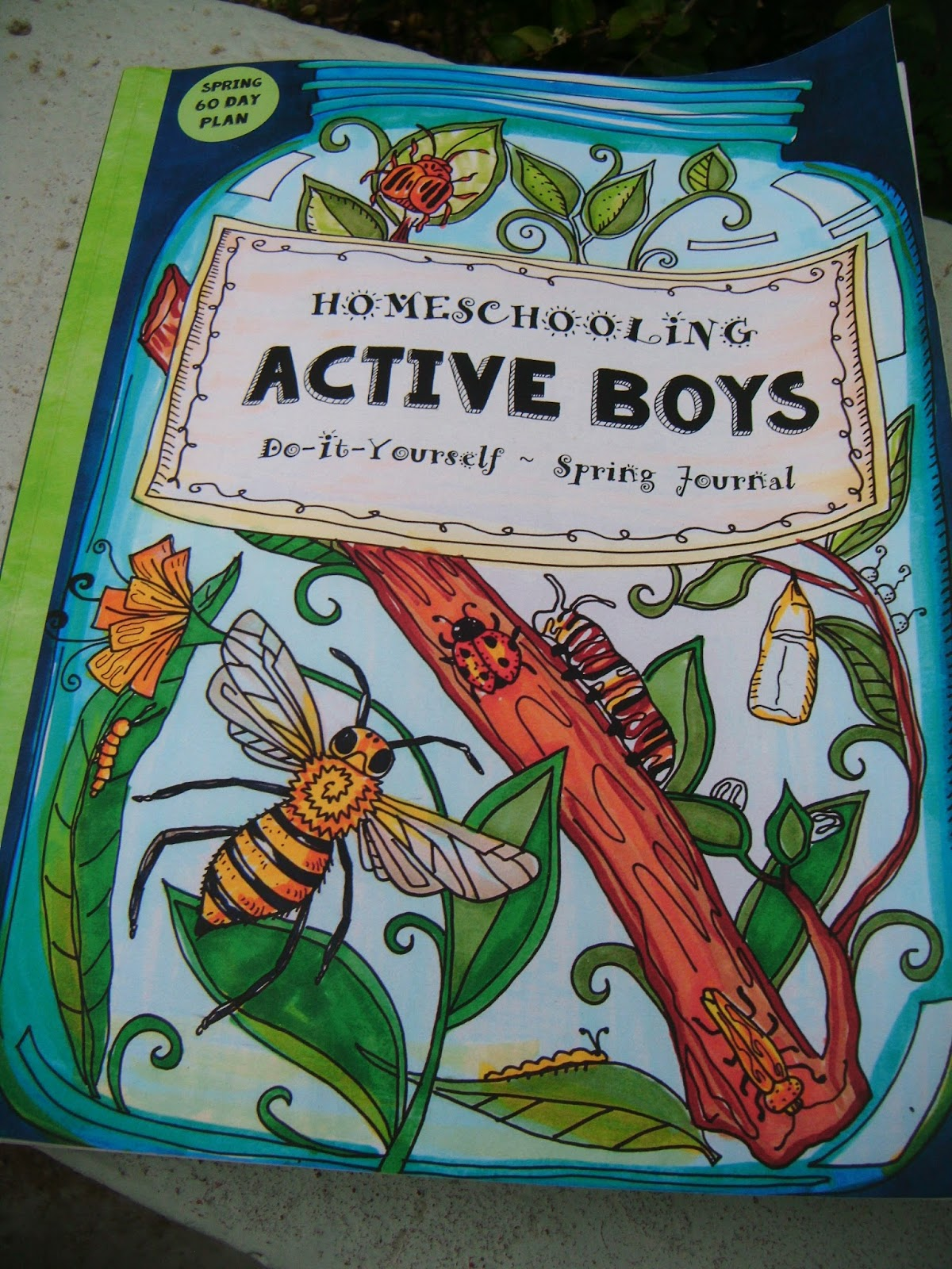The abcd diaries homeschooling active boys journal by sarah janisse because he gets bored easily with traditional curriculum options we were excited to find homeschooling active boys do it yourself spring journal 3 solutioingenieria Image collections