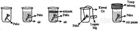 Percobaan korosi besi, paku dimasukkan dalam berbagi medium