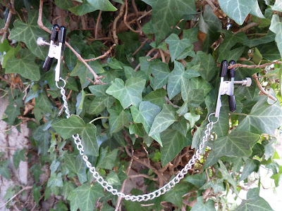 Oh Glow Blog CalExotics Nipple Clamps With Chain