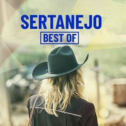 CD Sertanejo Best Of - Vários Artistas 2019