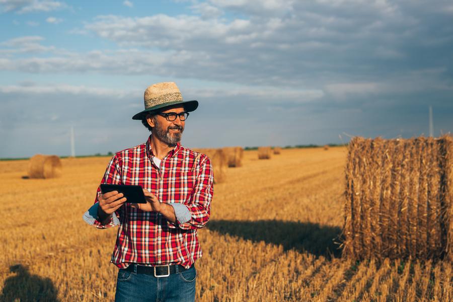 Dia Mundial da Agronomia: profissionais comentam como produzir com sustentabilidade