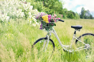 Bisiklet Ile Kadın Bisiklet Bisiklet Köpek Yaz Bisiklet Bisiklet Tesisleri Tencere Yaprakları Çalışma Penceresi Kırmızı Bisiklet Bağbozumu Bisiklet Bisiklet Bisiklet Bağbozumu Motorlu Scooter Park Edilmiş Bina Motorlu Bisiklet Bisiklet Olgun Bayan Bisikleti Yakın Çekim Işlemeli Yün Kırmızı Bisiklet Kadın Kırmızı Elbise Yaz Bisikleti Açık Bisiklet Velo Jantlar Bisiklet Renk Renkli Boyalı Bisiklet Bisiklet Sepeti Çiçek Sepeti Gidon Bisiklet Çayır Çiçek Çimen Bisiklet Bahar Yeşil Bisiklet Bisiklet Rahat Moda Model Açık Kişi Bisiklet Bisiklet Bisikletçi Şafak Alacakaranlık Adam Açık Havada Kadın Kız Bisiklet Gün Batımı Yürüyüş Abendstimmung Köpek Siluet Bisiklet Fitness Kadın Sportif Sağlıklı Bisiklet Dekore Eski Ekili Yeşil Açık Havada Tasarım Bisiklet Bisiklet Yeşil Spor Duvar Jantlar Retro Eski Bisiklet Bisiklet Çiçek Orman Doğa Sonbahar Yaprakları Vintage Bisiklet Çiçek Bisiklet Retro Vintage Bisiklet Bisiklet Çiçek Sepeti Bisiklet Bağbozumu Retro Bahar Scooter Moped Erkek Kadın Araç Motor Genç Kanal Nehir Köprü Bisiklet Ağaç Manzara Delft Bisiklet Yaz Sepet Çevrimi Binmek Bayanlar Döngüsü Bike Rust Old Flowers Recycling Scrap Turned Off Bisiklet Çiçek Sepeti Bisiklet Bağbozumu Retro Bahar Motokros Enduro Dalgası Sörfçüler Yarış Bisiklet Scooter Bağbozumu Kız Taşıma Tekerleği Bisiklet Sepeti Taşıma Bisiklet Bahçe Çim Sürüş Öğleden Sonra Manzara Manzara Yolu Kız Bisiklet Işık Bisiklet Sürme Bulutlar Bisiklet Binmek Eğlence Döngüsü Mutlu Kurbağa Bisiklet Komik Sevimli Tatlı Rakam Sürücü Nature Summer Flora Garden Flowers Picnic Romance Pembe Duvar Bisiklet Bisiklet Pencere Kaldırım Dışında  Tasarım Tekerlekli Bisiklet Bisikletçi Ulaşım Panoramik Bisiklet Pas Eski Çiçekler Hurda Geri Dönüşüm Kapalı Bisiklet Asma Bitkisel Sepet Bisiklet Bağbozumu Sonbahar Kurbağa Bisiklet Komik Sevimli Tatlı Rakam Sürücü Bisiklet Paslı Büyümüş Dekorasyon Örümcek Ağları Eski Bisiklet Renkli Bisiklet Döngüsü Bisiklet Tekerleği