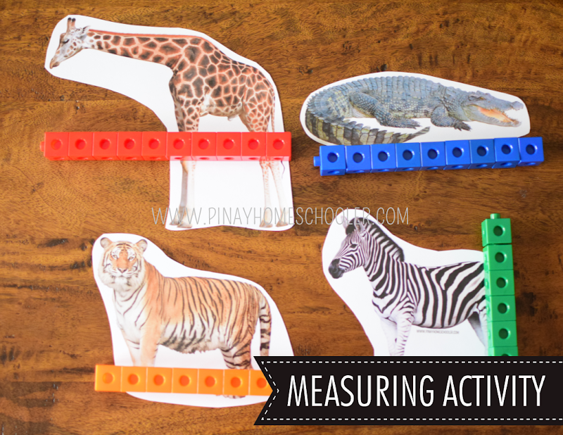 SAFARI TOOB THEME MATH ACTIVITIES