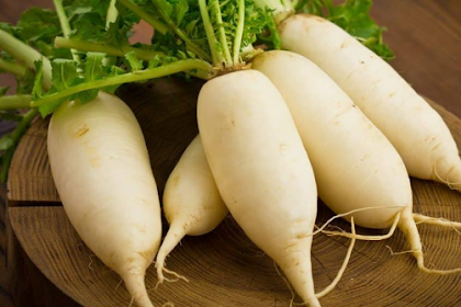 The benefits of Radish