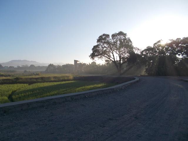 Short cut road to Carissa 2