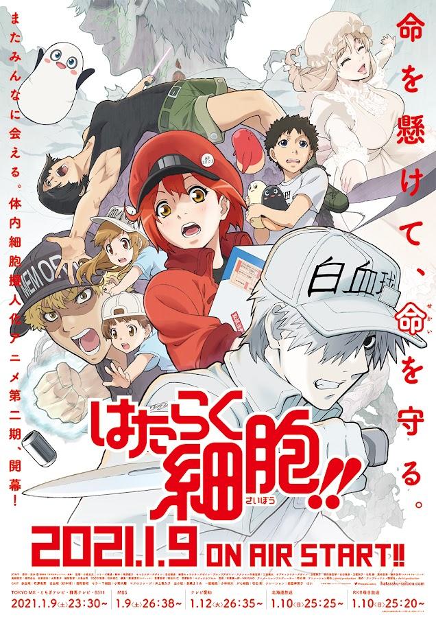 Póster de la segunda temporada de Hataraku Saibou