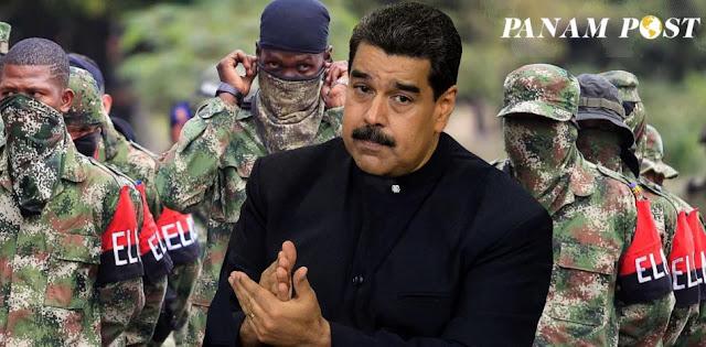 """""""Guerrilla del ELN es quien cuida el oro de Maduro"""": PanAm Podcast"""